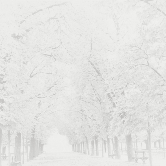 <p><em>Luxembourg All&eacute;</em>, from the series <em>Ghost</em>. Gelatin Silver Print.12</p>