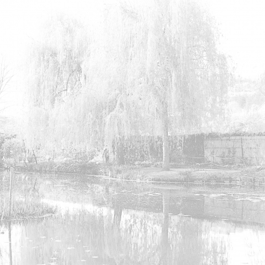 <p><em>Giverny</em>, from the Series <em>Ghost</em>. Gelatin Silver Print.</p>