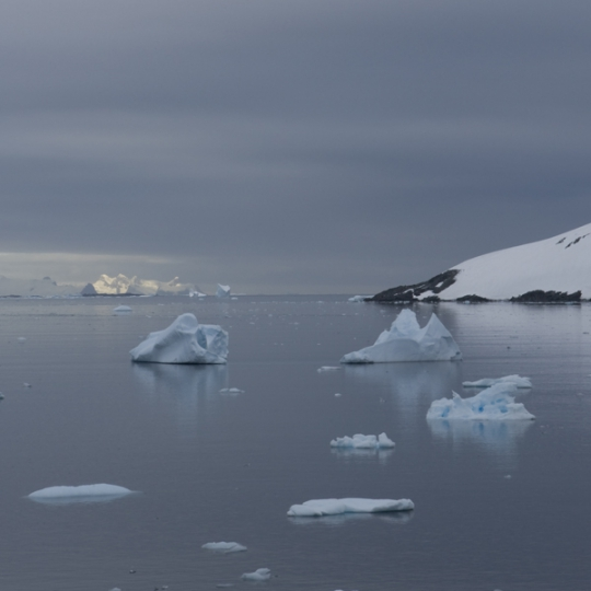 "<p><em>Antarctica _3FJ3238</em> Chromogenic Transparency, LED Light Panel. 36"" x 60"" 2007</p>"